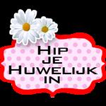 hip-aangepast-shop2-zonder-shop-150×150